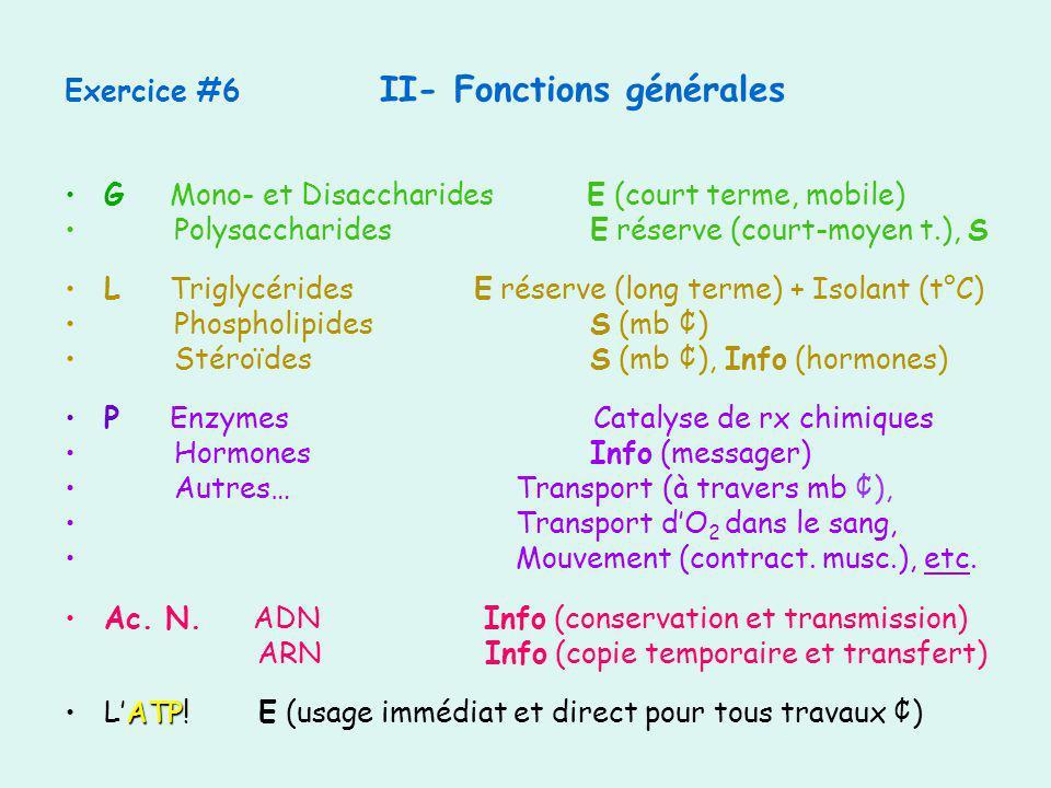 Exercice #6 II- Fonctions générales GMono- et Disaccharides E (court terme, mobile) Polysaccharides E réserve (court-moyen t.), S LTriglycérides E rés