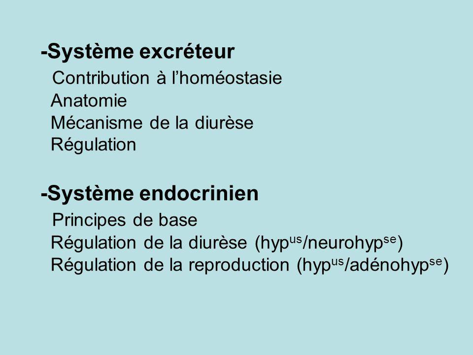 -Système excréteur Contribution à lhoméostasie Anatomie Mécanisme de la diurèse Régulation -Système endocrinien Principes de base Régulation de la diu