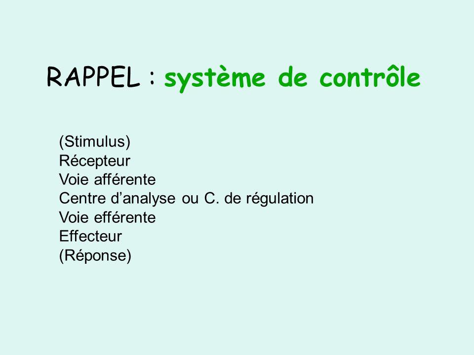 RAPPEL : système de contrôle (Stimulus) Récepteur Voie afférente Centre danalyse ou C. de régulation Voie efférente Effecteur (Réponse)