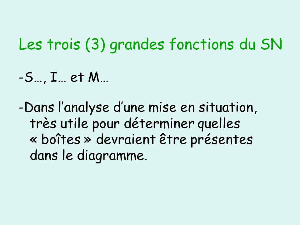 Neurones - structure (forme) :