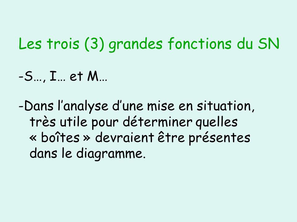 Les trois (3) grandes fonctions du SN -S…, I… et M… -Dans lanalyse dune mise en situation, très utile pour déterminer quelles « boîtes » devraient être présentes dans le diagramme.