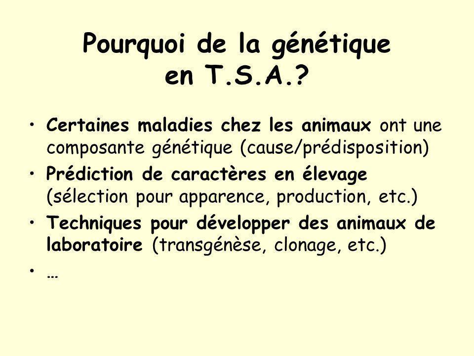 Pourquoi de la génétique en T.S.A..
