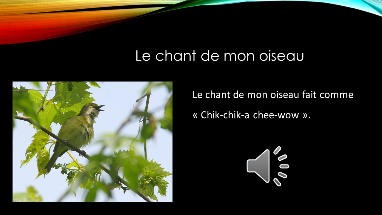 Le chant de mon oiseau Le chant de mon oiseau fait comme « Chik-chik-a chee-wow ».