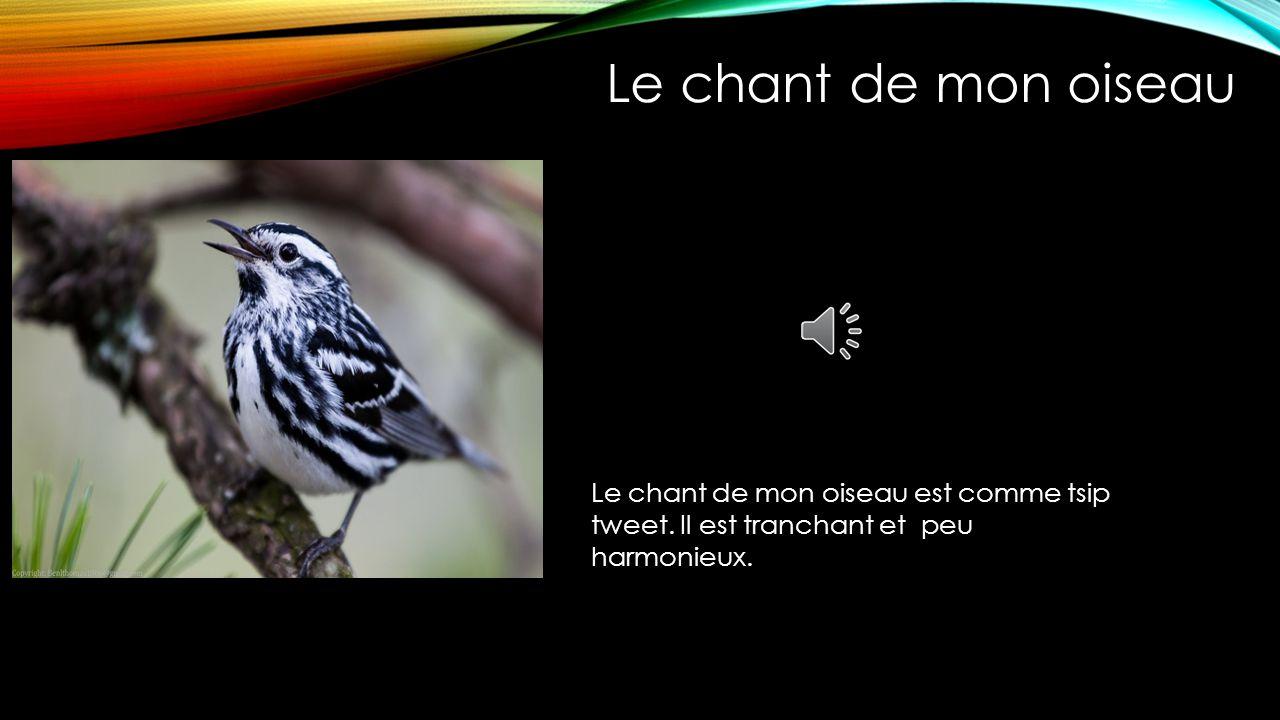 Le chant de mon oiseau Le chant de mon oiseau est comme tsip tweet.