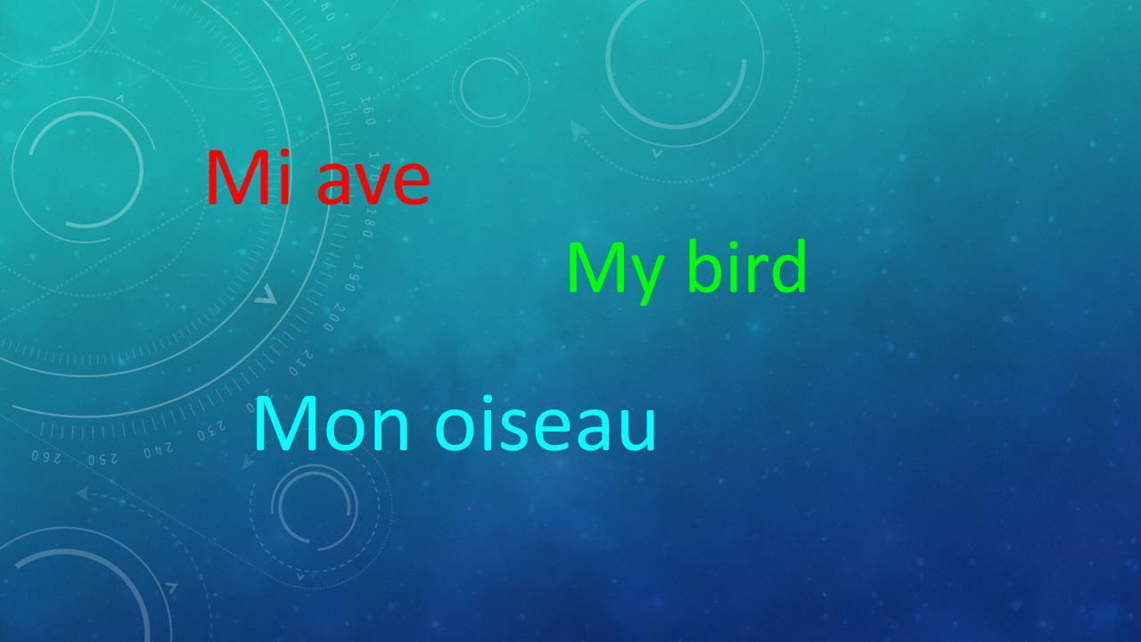 Mi ave My bird Mon oiseau