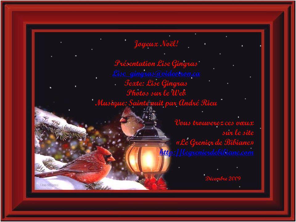 Joyeux Noël! Bonne année 2010