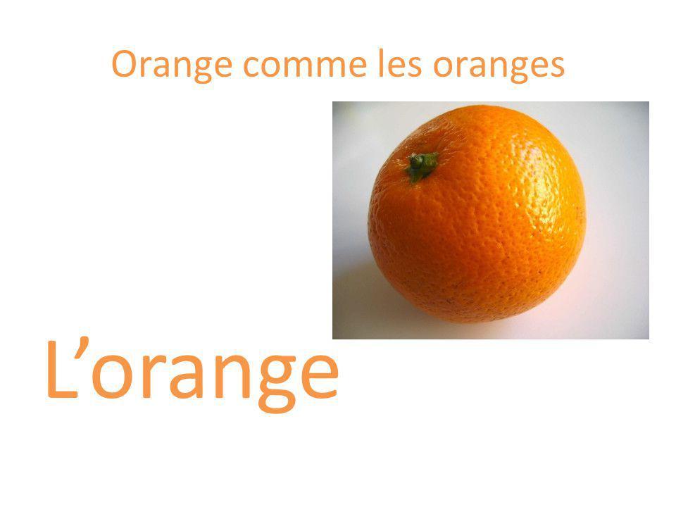 Orange comme les oranges Lorange