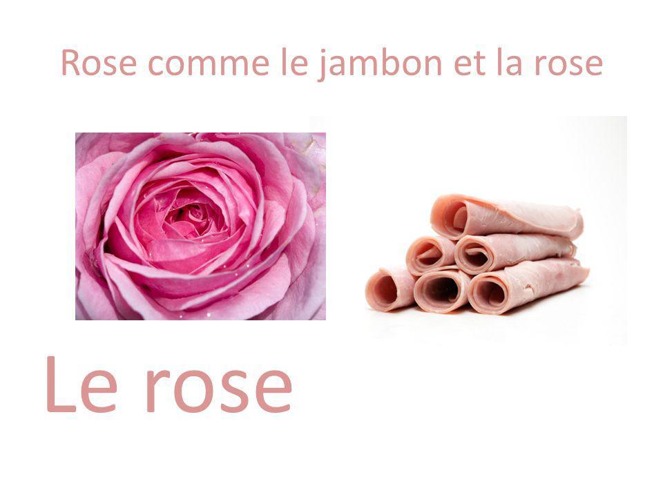 Rose comme le jambon et la rose Le rose