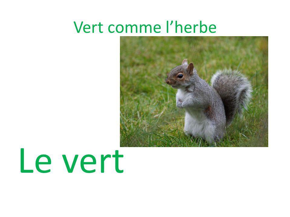 Vert comme lherbe Le vert