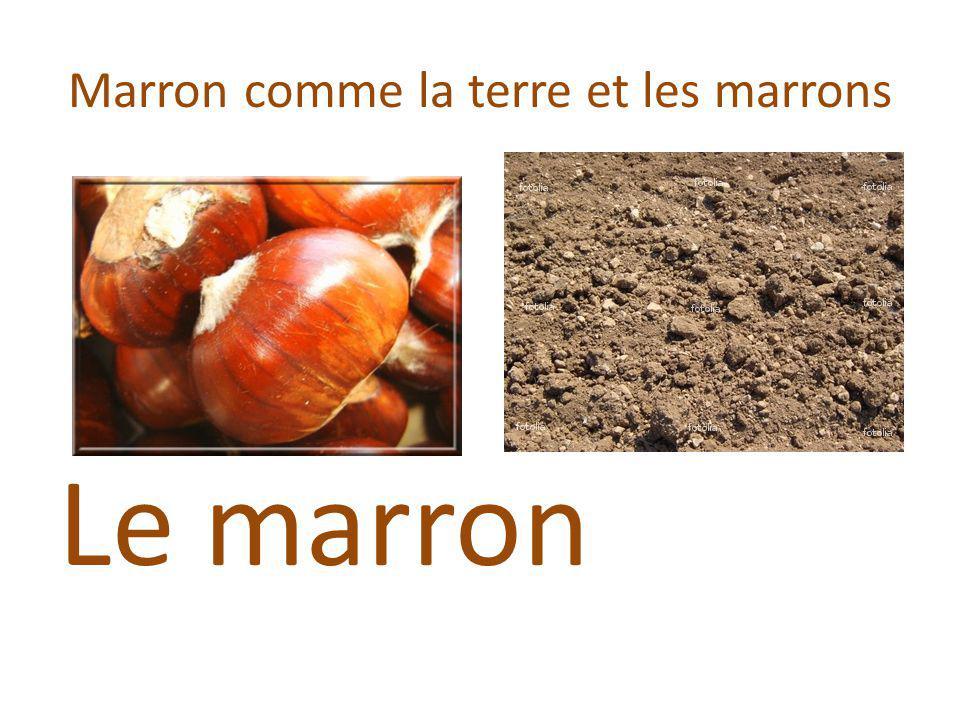 Marron comme la terre et les marrons Le marron