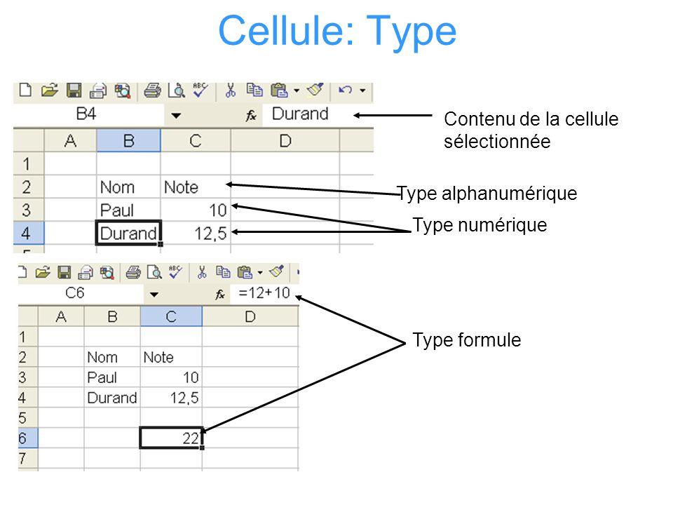 Cellule: Format