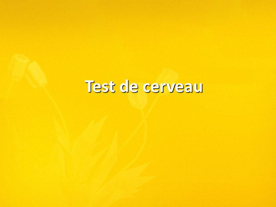 Test de cerveau