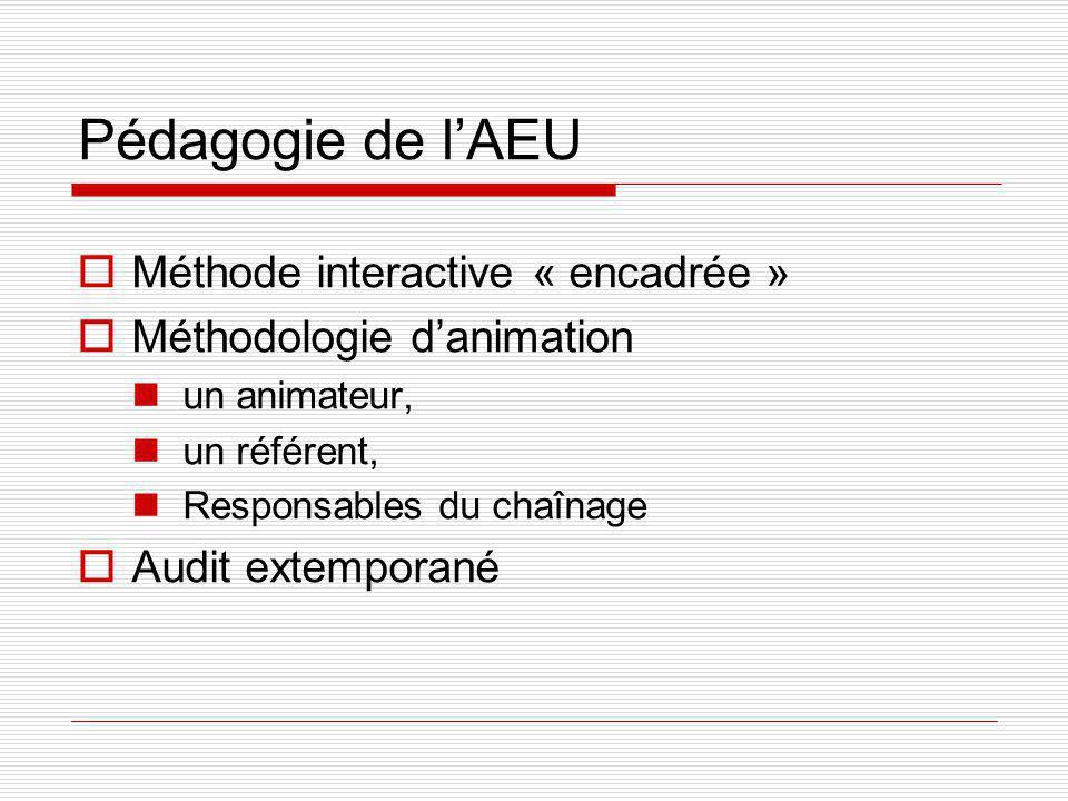 Pédagogie de lAEU Méthode interactive « encadrée » Méthodologie danimation un animateur, un référent, Responsables du chaînage Audit extemporané