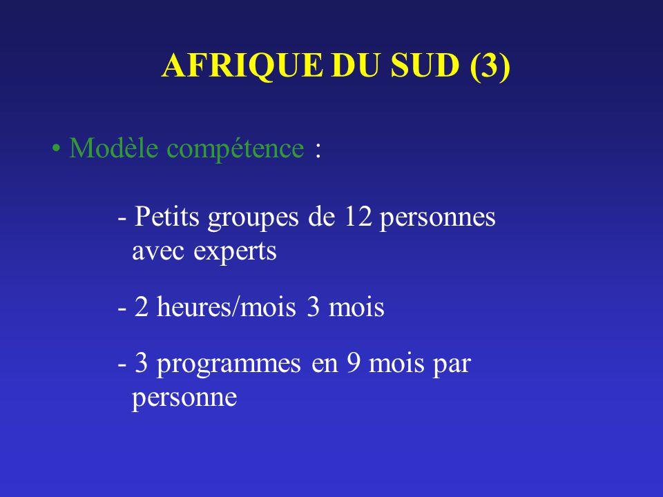 AFRIQUE DU SUD (3) Modèle compétence : - Petits groupes de 12 personnes avec experts - 2 heures/mois 3 mois - 3 programmes en 9 mois par personne
