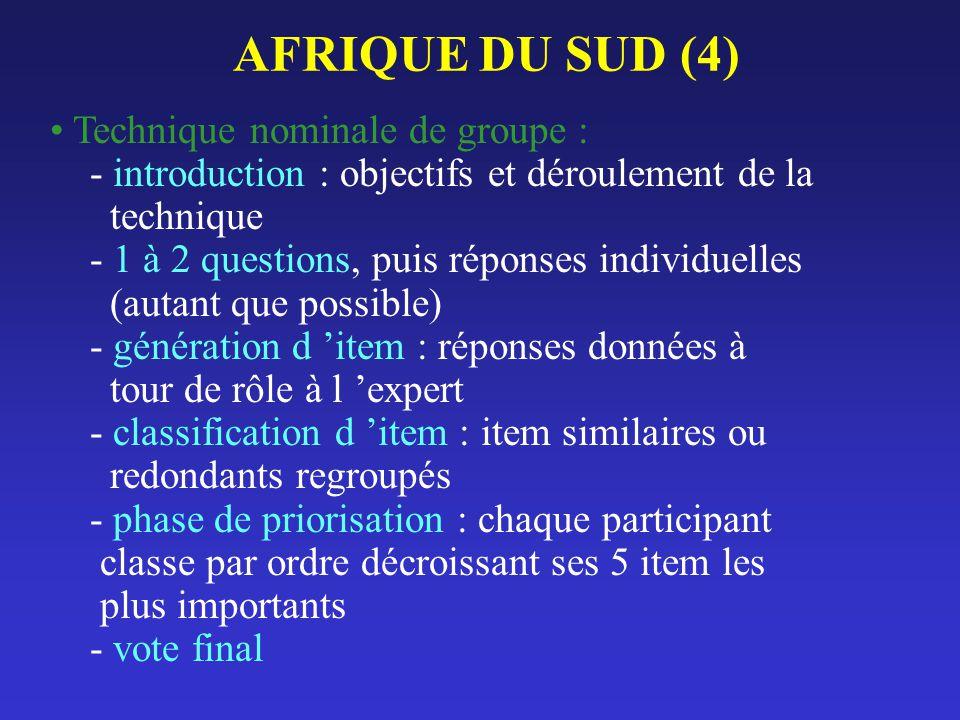 AFRIQUE DU SUD (4) Technique nominale de groupe : - introduction : objectifs et déroulement de la technique - 1 à 2 questions, puis réponses individue