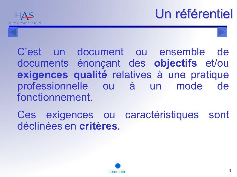 3 Un référentiel Cest un document ou ensemble de documents énonçant des objectifs et/ou exigences qualité relatives à une pratique professionnelle ou à un mode de fonctionnement.