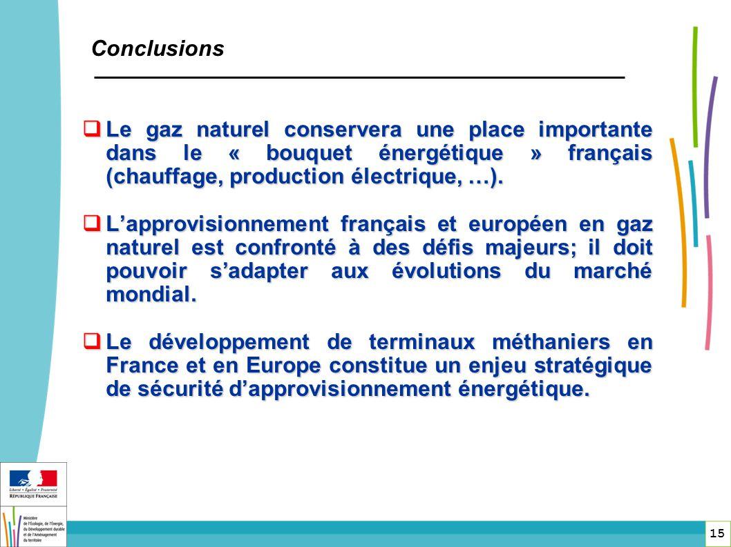 Le gaz naturel conservera une place importante dans le « bouquet énergétique » français (chauffage, production électrique, …). Le gaz naturel conserve