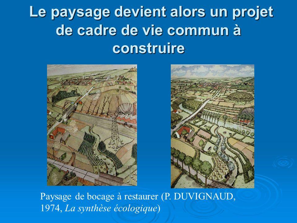 Le paysage devient alors un projet de cadre de vie commun à construire Le paysage devient alors un projet de cadre de vie commun à construire Paysage de bocage à restaurer (P.