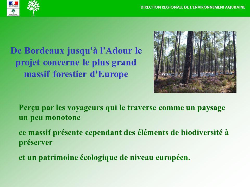 DIRECTION REGIONALE DE LENVIRONNEMENT AQUITAINE Perçu par les voyageurs qui le traverse comme un paysage un peu monotone ce massif présente cependant des éléments de biodiversité à préserver et un patrimoine écologique de niveau européen.