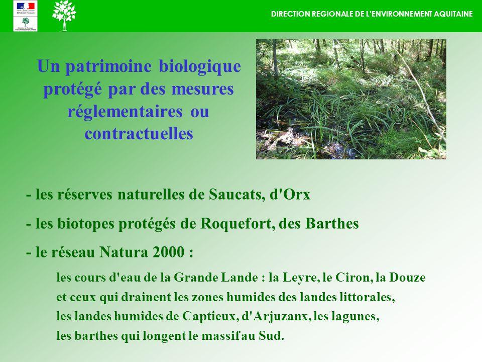 DIRECTION REGIONALE DE LENVIRONNEMENT AQUITAINE Un patrimoine biologique protégé par des mesures réglementaires ou contractuelles - les réserves naturelles de Saucats, d Orx - les biotopes protégés de Roquefort, des Barthes - le réseau Natura 2000 : les cours d eau de la Grande Lande : la Leyre, le Ciron, la Douze et ceux qui drainent les zones humides des landes littorales, les landes humides de Captieux, d Arjuzanx, les lagunes, les barthes qui longent le massif au Sud.