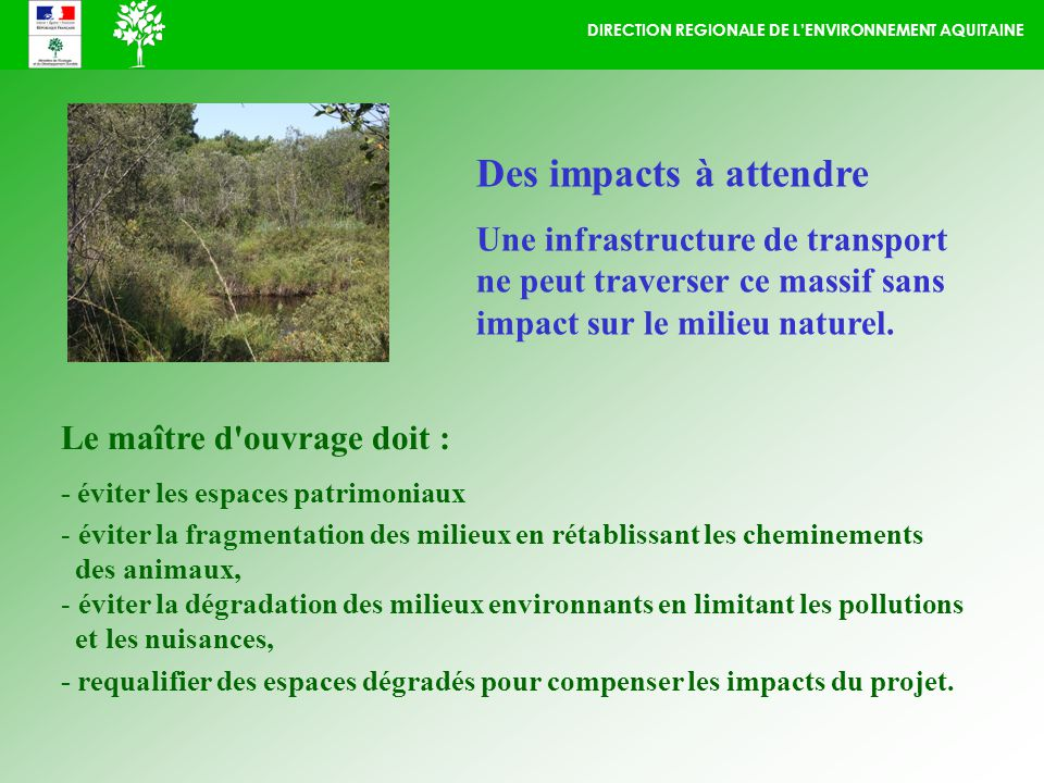 DIRECTION REGIONALE DE LENVIRONNEMENT AQUITAINE Des impacts à attendre Une infrastructure de transport ne peut traverser ce massif sans impact sur le milieu naturel.