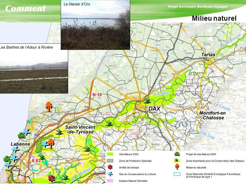Milieu naturel Les Barthes de lAdour à Rivière Les Barthes de lAdour à Rivière Le Marais dOrx