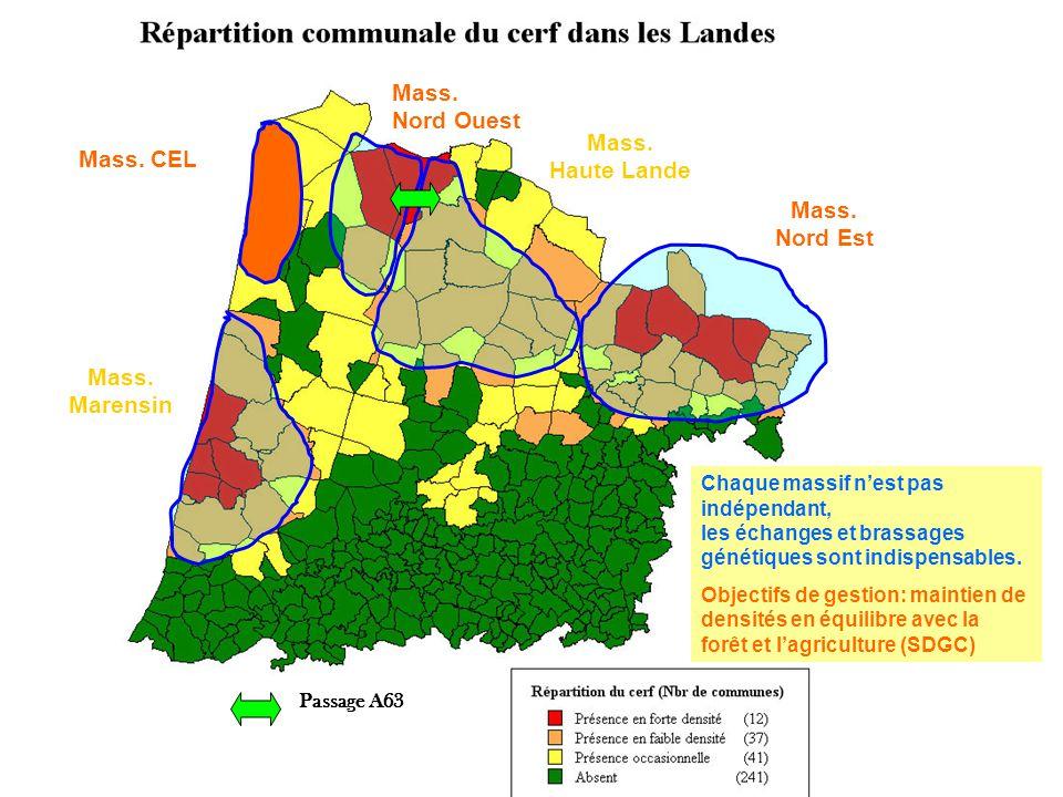 Les infrastructures linéaires rompent la continuité des milieux et sectionnent les voies naturelles de circulation de la faune.
