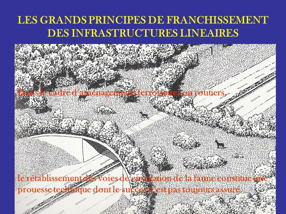LES GRANDS PRINCIPES DE FRANCHISSEMENT DES INFRASTRUCTURES LINEAIRES Pour la grande faune (cerf), la localisation des ouvrages de franchissement doit être projeté selon lexistant (cœur du massif).