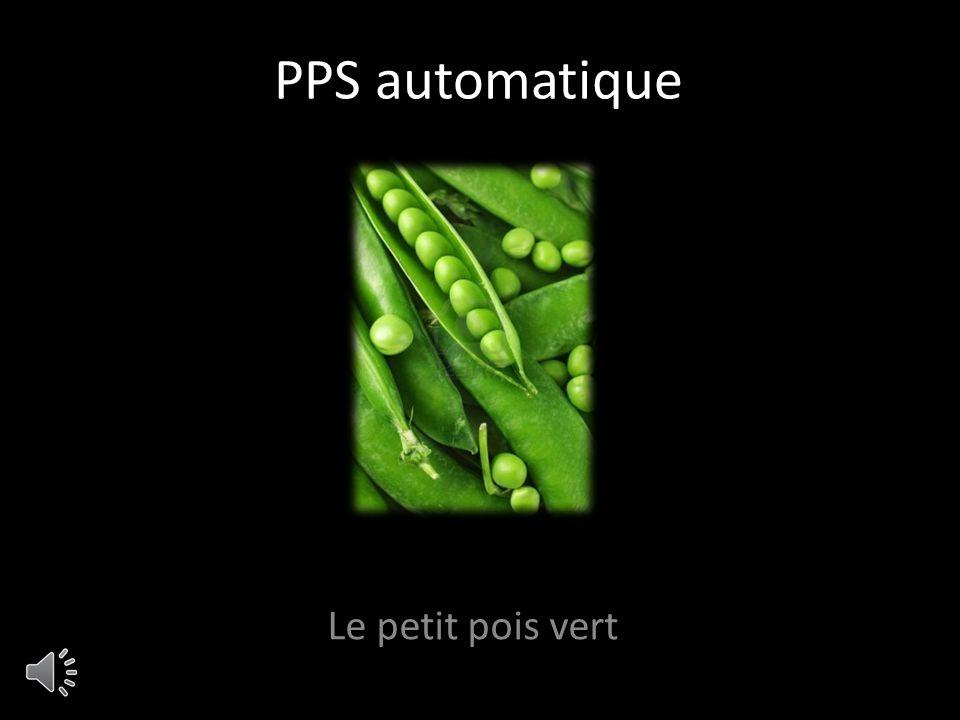 PPS automatique Le petit pois vert