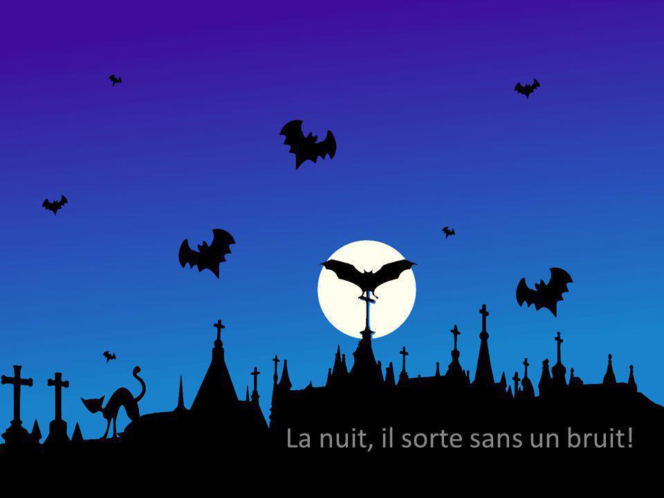 La nuit, il sorte sans un bruit!