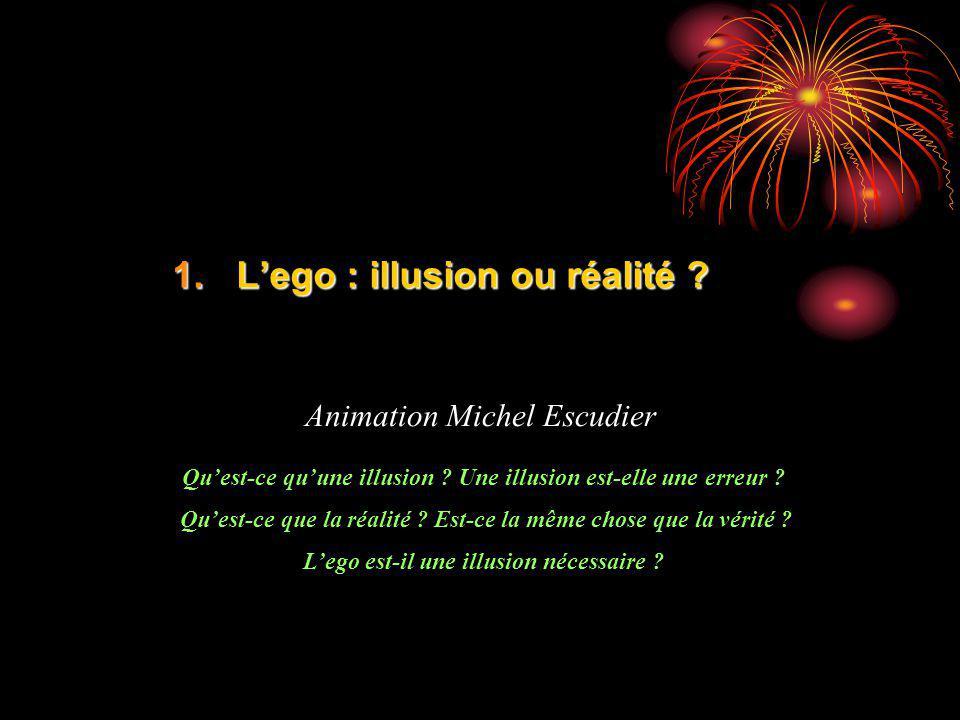 1.Lego : illusion ou réalité ? Animation Michel Escudier Quest-ce quune illusion ? Une illusion est-elle une erreur ? Quest-ce que la réalité ? Est-ce