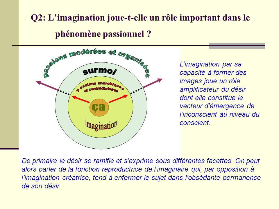 Q2: Limagination joue-t-elle un rôle important dans le phénomène passionnel ? De primaire le désir se ramifie et sexprime sous différentes facettes. O