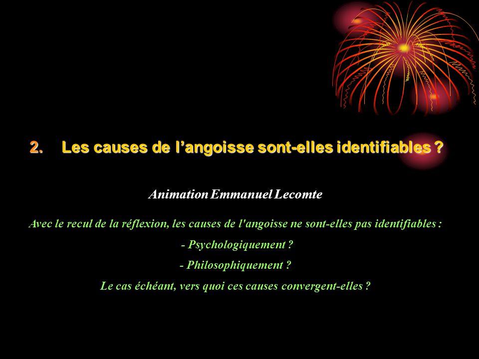 2.Les causes de langoisse sont-elles identifiables ? Animation Emmanuel Lecomte Avec le recul de la réflexion, les causes de l'angoisse ne sont-elles
