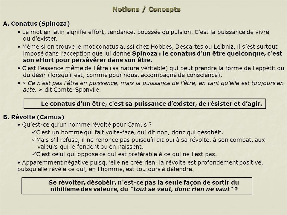 Notions / Concepts C.Volonté de puissance (Nietzsche) Nietzsche voit dans la volonté de puissance, lessence la plus intime de lêtre.