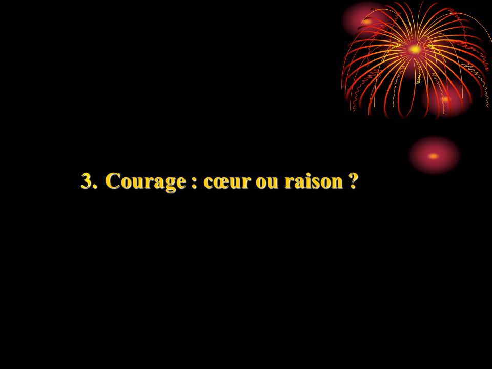 3. Courage : cœur ou raison ?