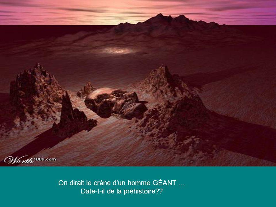On dirait le crâne dun homme GÉANT … Date-t-il de la préhistoire??