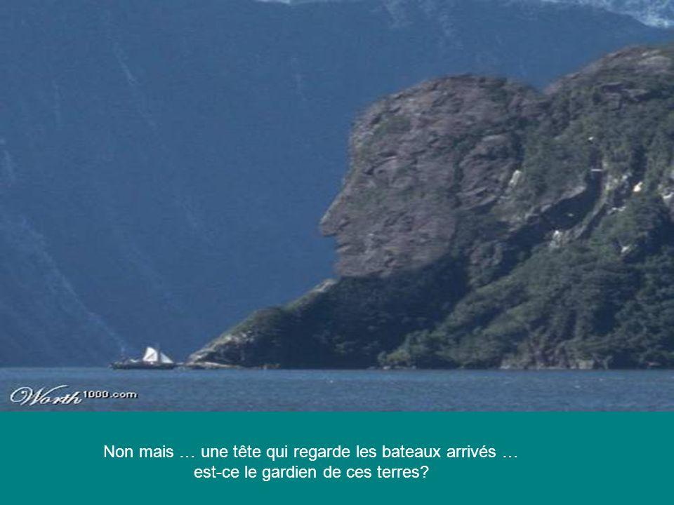 Non mais … une tête qui regarde les bateaux arrivés … est-ce le gardien de ces terres?