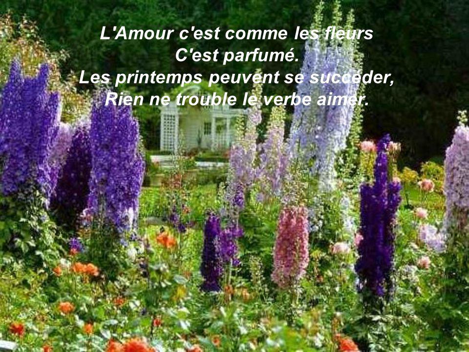 L Amour c est comme les fleurs C est parfumé.