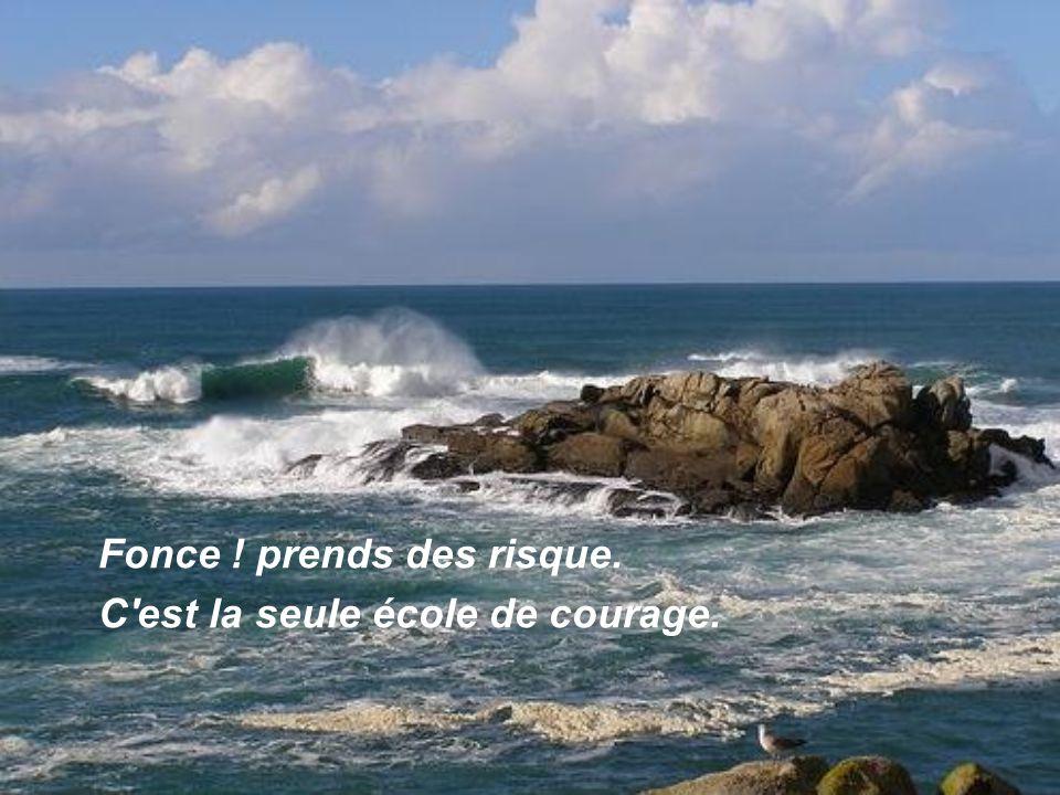 Même au creux de la vague ne te laisse pas couler Avance ! Car toute vague revient à son tour.