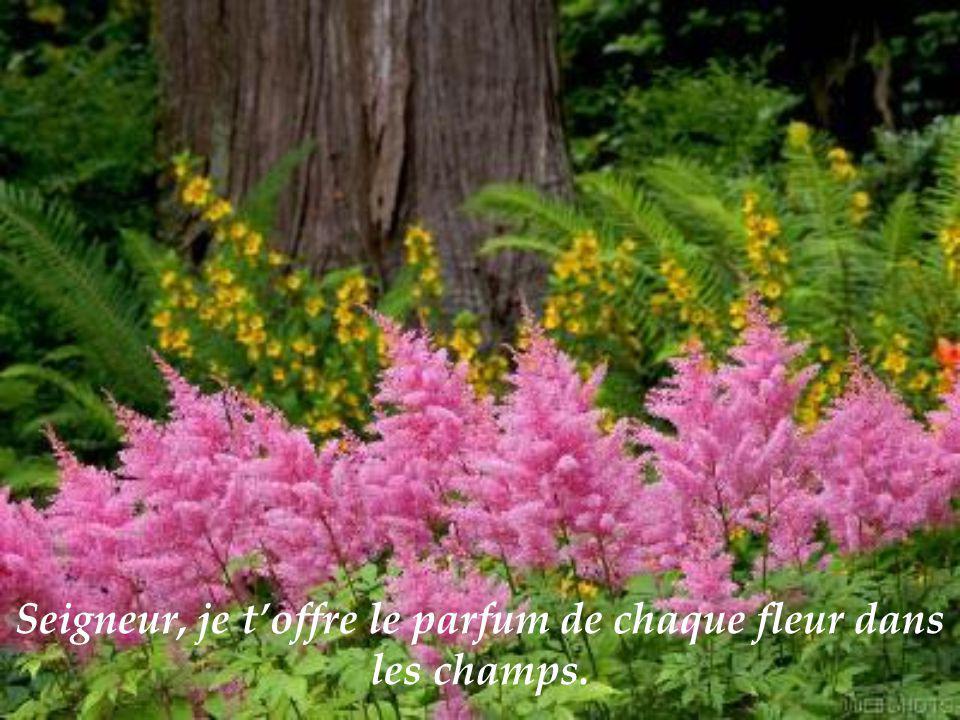 Seigneur, je toffre le parfum de chaque fleur dans les champs.