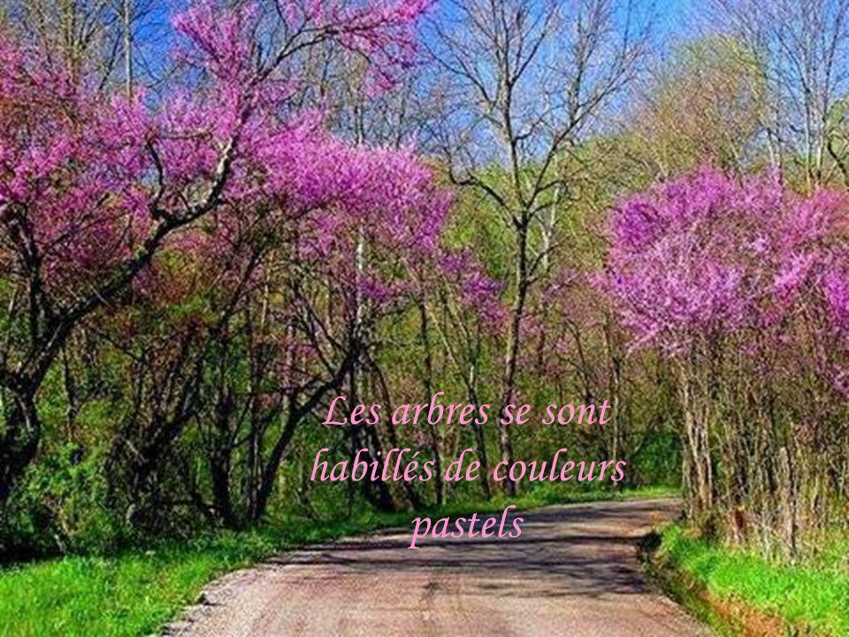 Les arbres se sont habillés de couleurs pastels
