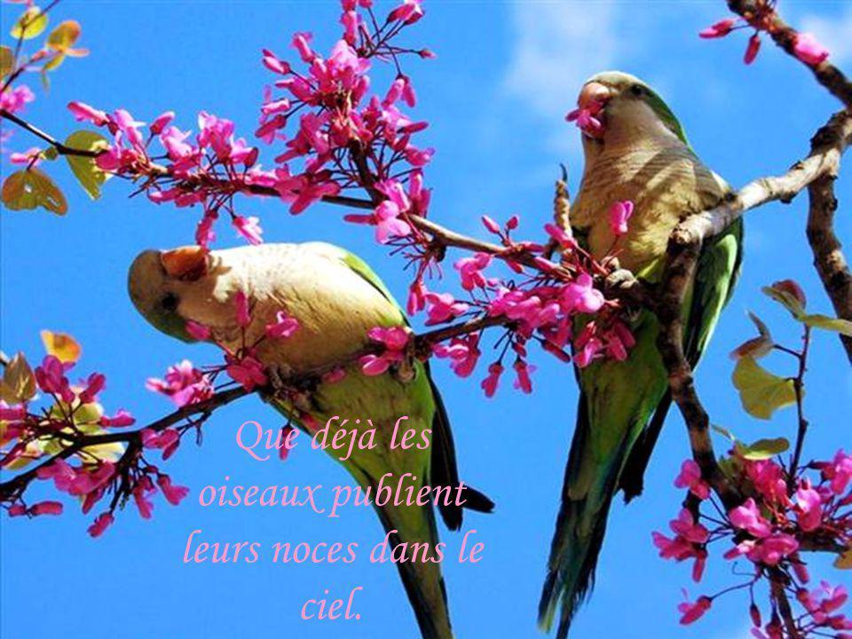 Que déjà les oiseaux publient leurs noces dans le ciel.
