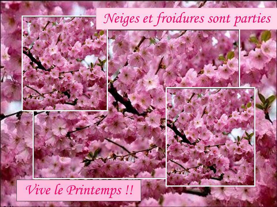 Mai 2010 http://www.les amours de mado.com