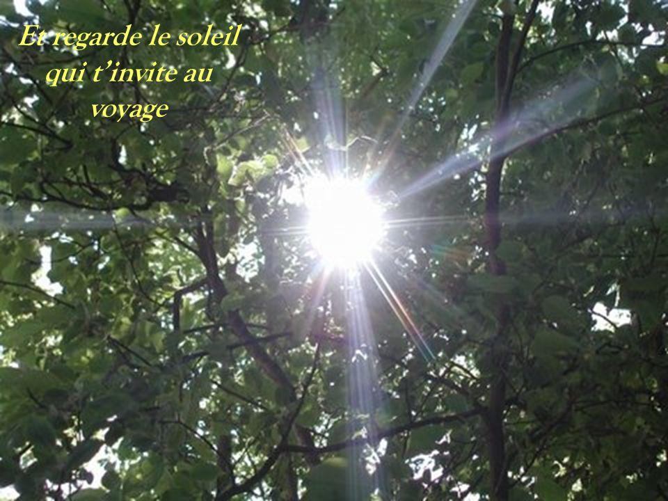 Et regarde le soleil qui tinvite au voyage
