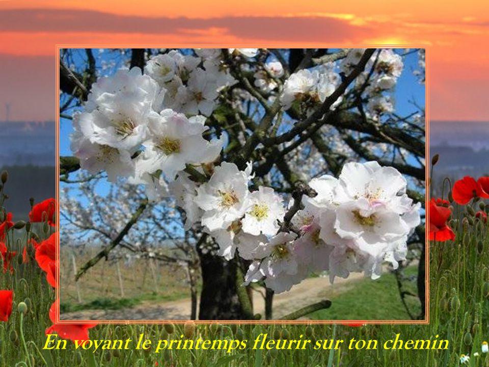 En voyant le printemps fleurir sur ton chemin
