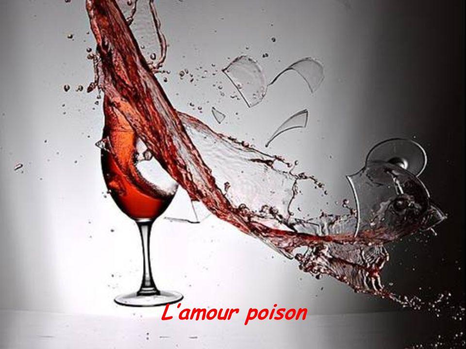 Lamour passion