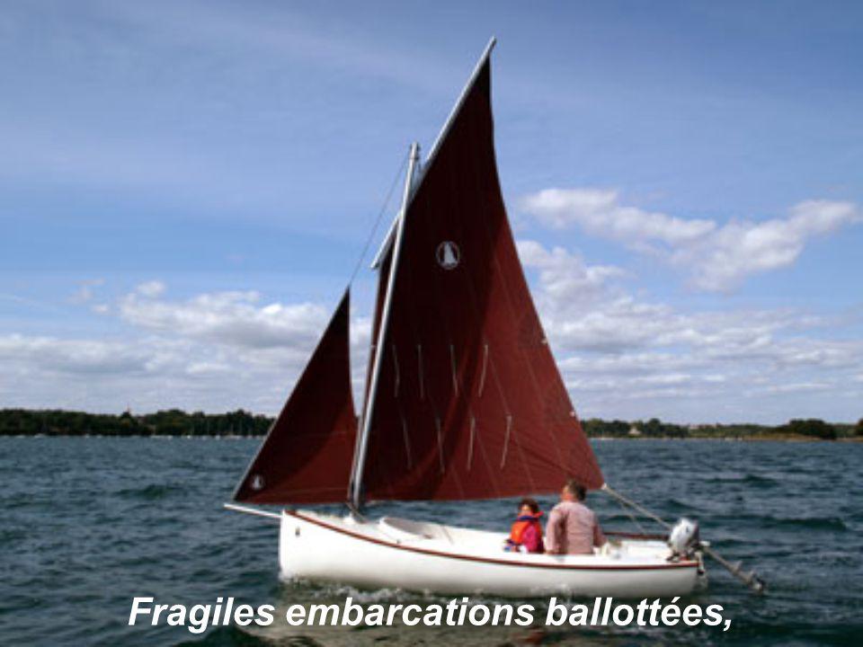 Au loin évoluent les petits voiliers,