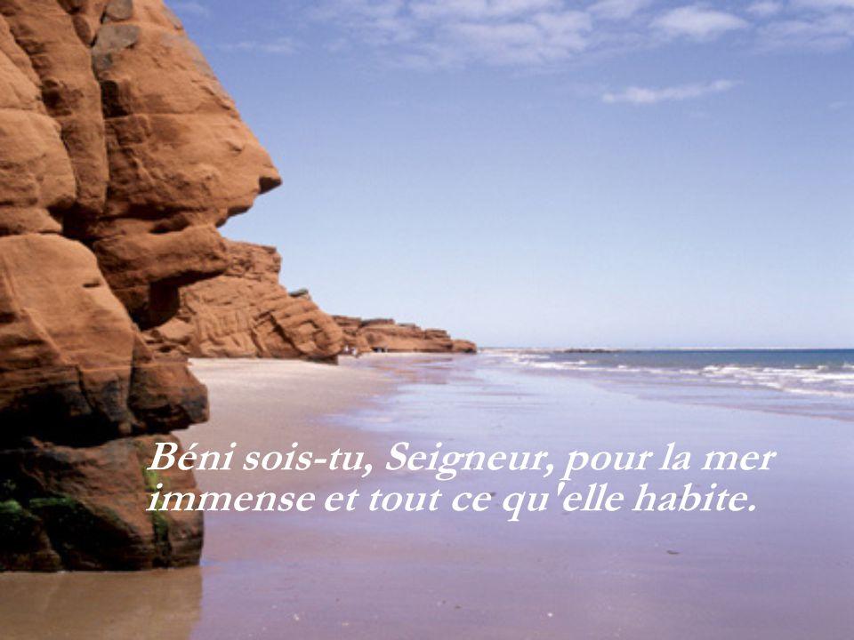 Béni sois-tu, Seigneur, pour la mer immense et tout ce qu elle habite.