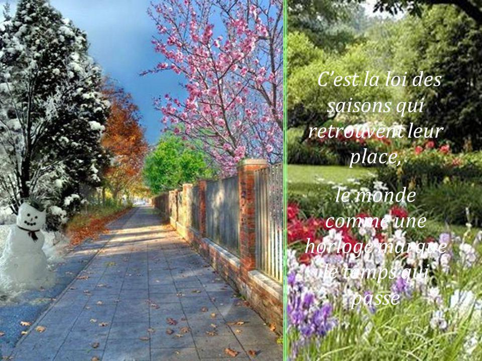 Que jaime ces couleurs qui reviennent chaque année à lautomne au printemps