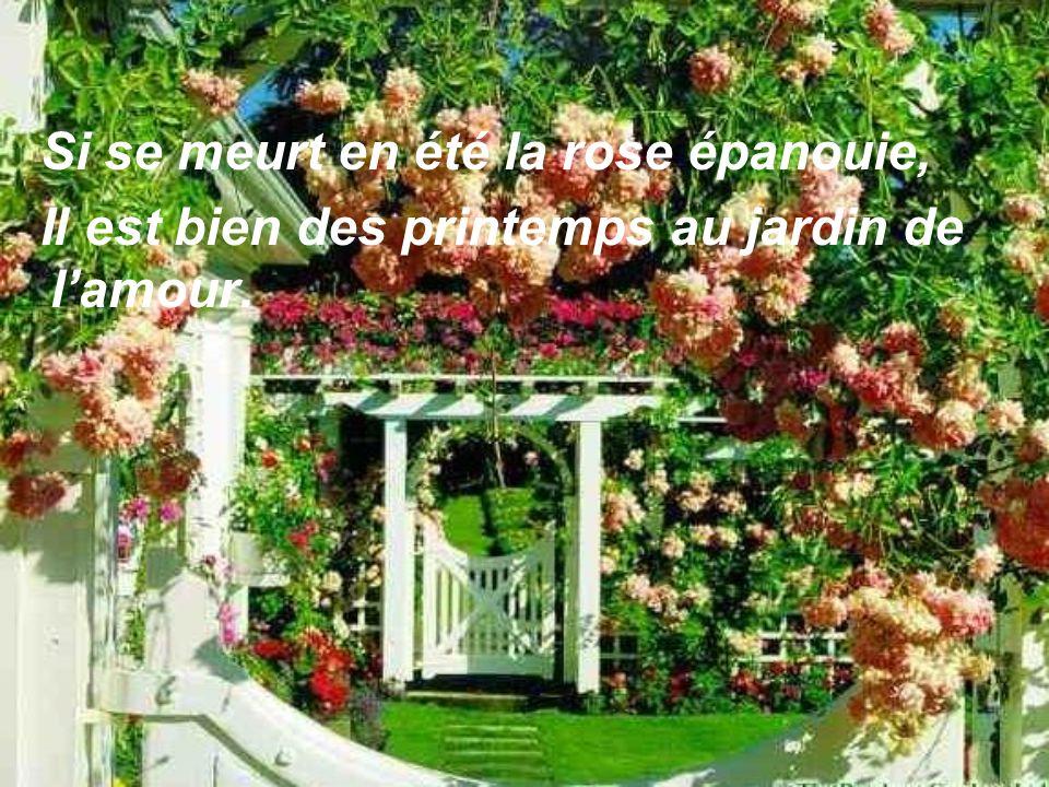 Si se meurt en été la rose épanouie, Il est bien des printemps au jardin de lamour.